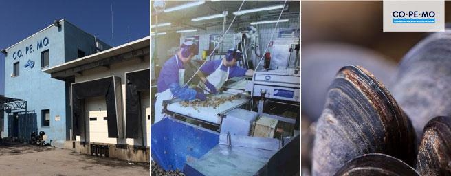 Co.Pe.Mo. Cooperativa pescatori molluschicoltori